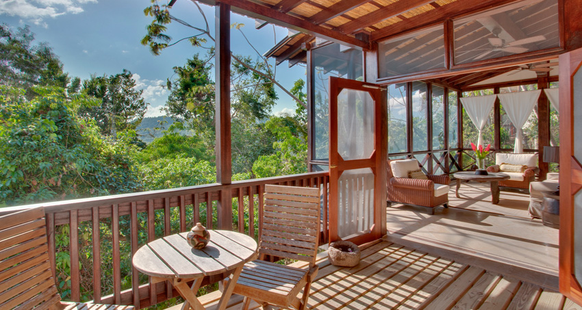 Hotels Near Rainforest & Nature