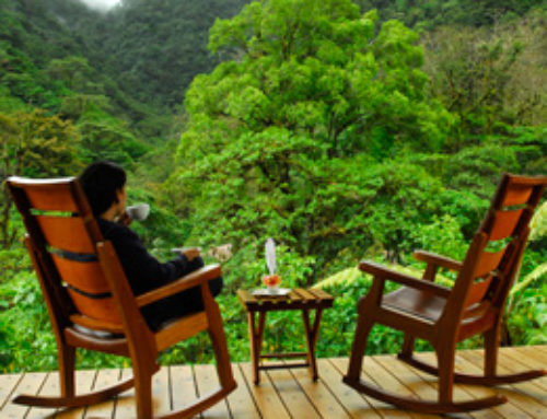 The Cloud Forests of Costa Rica