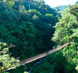 hikesandwaterfalls