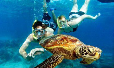 Belize-Snorkeling
